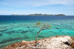 DSC_9833 (@SweetRiver) Tags: ocean vacation beach philippines tropical coron