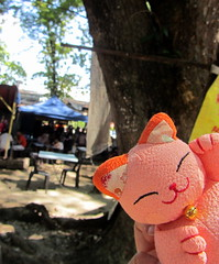 My Maneki-Neko (Taking5) Tags: malaysia bigtree manekineko ipoh luckycat
