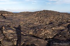 Photographing frozen lava flows (josefrancisco.salgado) Tags: shadow usa kalapana volcano hawaii lava us nikon unitedstatesofamerica sombra pacificocean nikkor hawaiivolcanoesnationalpark kilauea pahoehoe volcn d4 bigislandofhawaii lavaflow punadistrict josefrancisco phoehoe 2470mmf28g josfranciscosalgado