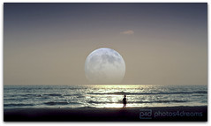 there's a pale moon rising ... (photos4dreams) Tags: pale moon sea meer mond blass blasser photoshopped loneliness einsamkeit strandläufer water wasser horizon horizont photos4dreams p4d photos4dreamz photoshop supermoon landschaft landscape