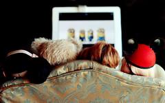 OK, Let's begin to enjoy the Movie!!