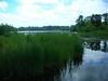 LakeWaban6-17-2012003
