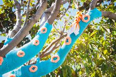 Squid Tree Yarn Bomb (LornaWatt) Tags: sanfrancisco streetart make knitting crochet knit craft squid bayarea publicart maker sanmateo giantsquid machineknit squidtree yarnbomb yarnbombedtree