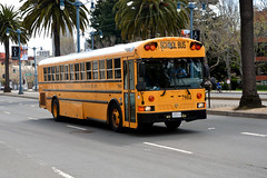 American School Bus - Michael's Transportation 7904 (Howard_Pulling) Tags: sf sanfrancisco california ca bus photo coach nikon picture april coaches 2013 hpulling howardpulling d5100