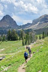 crest_trail_66 (StephenWilliDesigns) Tags: mountains hiking backpacking wildflowers wyoming tetons grandtetonnationalpark tetoncresttrail