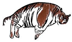 Tigre (Serge Lan) Tags: time drawing auka draw dibujo