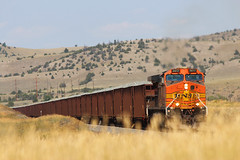 Golden Grass (view2share) Tags: railroad trees summer mountain mountains grass rock train montana track mt manhattan transport tracks july rail railway rr trains transportation rails logan plains ac ge herzog plain freight bnsf mrl railroads ballast generalelectric freighttrain greatplains railroading freightcars burlingtonnorthernsantafe freightcar rring 2013 trackage bnsfrailway montanaraillink ac4400cw rrcar rocktrain bnsf5617 july2013 3rdsub july292013 montanatrip2013