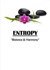 Entropy-1 (IE Mobile Business Directory) Tags: physicaltherapy dayspa massagetherapists massagetherapy luxuryspa fullbodymassage sportstherapy