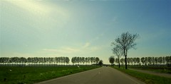Netherlands Roadscapes 02