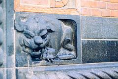 027-12 (25 minutes) Tags: street copenhagen denmark eos 50mm europe lion snap carve f18 50d streetsnap