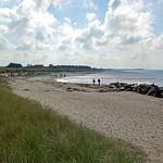 Ostseestrand auf der Insel Hiddensee zwischen Vitte und Kloster (1) thumbnail