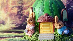Sunday afternoon (Allan Saw) Tags: macro bunny home forest relax rabbits extensiontube