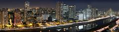 Skyline - Sao Paulo - Av Nacoes Unidas (Carlos Alkmin) Tags: city skyline modern night cityscape saopaulo sãopaulo panoramic sampa sp noite saintpaul sanpablo sanpaolo marginalpinheiros puentecolgante berrini cptm estaçãoberrini ponteestaiada brooklinnovo ponteoctaviofriasdeoliveira avenidanaçõesunidas corporatedistrict