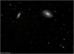 M81 M82 and Supernova SN2014J (The Dark Side Observatory) Tags: night canon stars march timelapse images galaxy astrophotography astronomy nightsky supernova ursamajor stacked constellation 2014 400mm m82 m81 ngc3077 astrometrydotnet:status=solved ioptron tomwildoner m82supernova sn2014j astrometrydotnet:id=nova240895