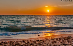 My Florida (DonMiller_ToGo) Tags: gulfofmexico nature clouds seascapes cloudy sunsets beaches sunburst skyscapes sunbeams skycandy gf1 sunsetmadness sunsetsniper