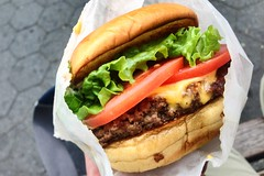 Shack burger (churl) Tags: food beef burger sandwich hamburger shakeshack