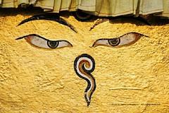 HAPPY BUDDHA PURNIMA  -   NEPAL 2014 (. MeG .) Tags: travel nepal eyes peace buddha nikond610