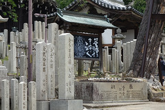 Nara (RS_1978) Tags: japan sony nara kamera sonycybershotdscrx10