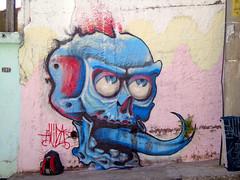 Skull (V I D A) Tags: streetart skull vida 13gang vidagraffiti