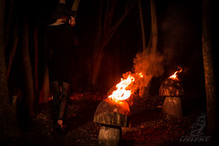 Burning Woods (Carrasco photography) Tags: winter cold canon dark denmark fire 50mm woods darkness surrealism hell evil surreal burn danmark skov randers canon6d