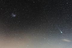 Comet C/2014 Q2 (Lovejoy) and Pleiades (flubatti) Tags: