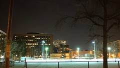 The Dog Park at Night (jessrawk) Tags: park street nightphotography light dog snow signs black tree green hockey lamp night fence buildings frank lights branch apartments glow shadows darkness branches ottawa parking skating creepy pole nighttime signage rink 51 lamps 365 dogpark offices highrises fiftyone snowbanks blackness parkingsigns nighttimephotography frankstreet creepytree nightvale litupfloors