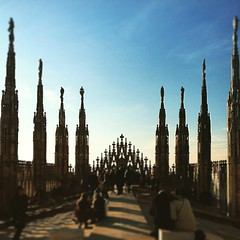 To the TOP! (super_chiarina) Tags: city milan square top milano filter squareformat duomo perpetua citt terrazza guglie terrazze iphonography iphoneography mylifeinmilan instagram instagramapp uploaded:by=instagram foursquare:venue=4e91a0d5775bfdaabcc528ba italianeography