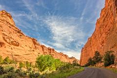 Burr Trail Road (since 1960) Tags: road trees sky plants mountains clouds nikon rocks desert pflanzen himmel wolken canyon berge area weite bume wste schlucht felsen expanse flche strase d7000