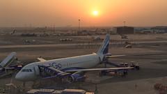Indigo Airbus A320 VT-IEG (Aiel) Tags: sunset airport ramp delhi indigo airbus newdelhi a320 a320232