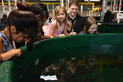 Raising Young Fish (Pacific Northwest National Laboratory - PNNL) Tags: fish doe mybrotherskeeper departmentofenergy pnnl takeyourkidstoworkday pacificnorthwestnationallaboratory aquaticsresearchlaboratory