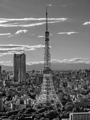 Chess (Fehlfokus) Tags: japan tokyotower