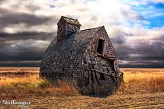Grain Shed (Pat Kavanagh) Tags: canada field farm alberta crops prairies foremost grainshed patrickkavanaghca
