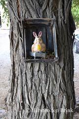 Rabbit in a crate (10b travelling) Tags: art toy persian asia asien iran box middleeast persia shiraz asie iranian crate esfahan persepolis 2014 neareast moyenorient naherosten mittlererosten tenbrink carstentenbrink westernasia iptcbasic 10btravelling
