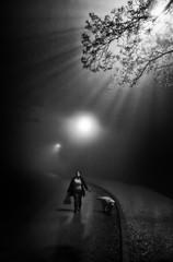 dreamwalk (Zlatko Vickovic) Tags: blackandwhite monochrome serbia streetphotography novisad vojvodina srbija streetbw streetphotographybw streetstreetphoto streetphotobw zlatkovickovic zlatkovickovicphotography