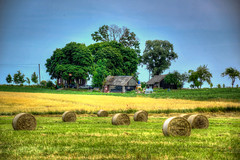 Farmstead at summer (lglaveckas) Tags: summer holiday nature grass self landscape photography freedom nikon photographer hey picture your be rolls hdr farmstead
