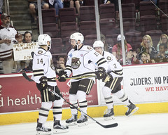 Hershey Bears (hartmantori) Tags: hockey bears den caps hershey ahl defend hersheybears washingtoncapitals hersheybearshockey