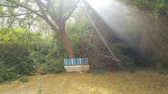 حديقة المنتزه (روضة الخيل) - قطر (Feras.Qadoura) Tags: park garden al doha qatar دولة قطر الدوحة muntazah rawdat الخيل حديقة المنتزه روضة alkhail