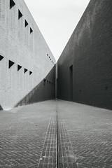 Sheakspeare Theatre, Gdask #2 (mmet95) Tags: white black lines architecture 35mm canon cityscape poland monochromatic minimal 5d minimalism leading gdask
