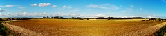 Northamptonshire, England (Paul Anthony Moore) Tags: england panorama northamptonshire harvest fields latesummer