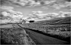 Harwood . (wayman2011) Tags: uk mono fells farms roads dales pennines lightroom countydurham harwood teesdale bwlandscapes canon50d rabyestate wayman2011