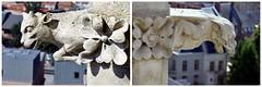 Un collage de gargouilles rencontres (Barbara DALMAZZO-TEMPEL) Tags: france notredame gargoyle cathdrale rosace extrieur amiens gargouille toits faadeoccidentale