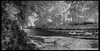 Fish Creek No. 3 (Dave Blinder) Tags: landscape ir olympus cny infrared newyorkstate 2016 m43 epl2 tamron14150mmdiiii daveblindercom p6047754pano