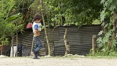 the hidden kitten (Pejasar) Tags: hidden kitten boy walk street candid child animal insideshirt honduras