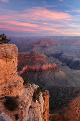 Grand Canyon Alpenglow (CloudRipR) Tags: arizona mountains clouds sunrise nikon alpenglow d300 grandcanyonnationalpark naturebynikon