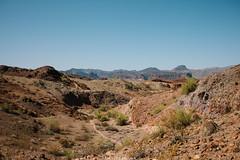5R6K2914 (ATeshima) Tags: arizona nature havasu