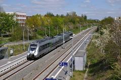 DB 1442 616, Leipzig Karlsruher Strasse, 02-05-2016 (Michael Postma) Tags: strasse db leipzig hamster s1 sbahn allee karlsruher mitteldeutschland miltitzer