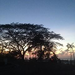 26253361582_ff47b4c333_o (carlo_delfinado) Tags: philippines manila zamboanga tawitawi zambaonga
