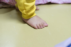 The feet of a little boy with yellow pants. (leykladay) Tags: park flowers boy people baby white color green love feet nature girl grass yellow season person foot grey stand kid spring toe child pants skin little outdoor body finger background parts bare father small fingers son fresh clothes step newborn daisy lovely isolated chamomile