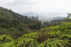 The Kuliouou Ridge Trail Oahu (caz76KOBE) Tags: travel usa canon landscape eos hawaii landscapes oahu hiking resort honolulu trecking 2016 landscapephotography ridgetrail kuliououridgetrail eos6d kuliouo 2016hawaii 2016caz76