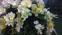 kvety (jurinkof) Tags: background kvety biele kvietky